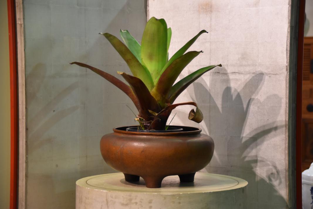 Copper brazier hibachi edo arts for Oriental furniture australia